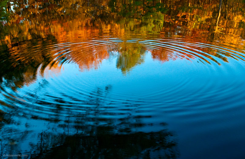 Ripples of Color